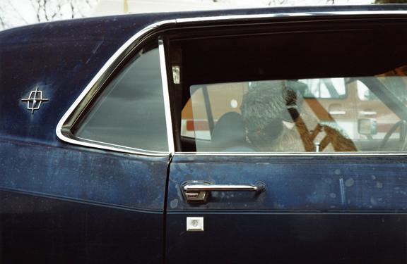 LAST VINTAGE AMERICAN CARS