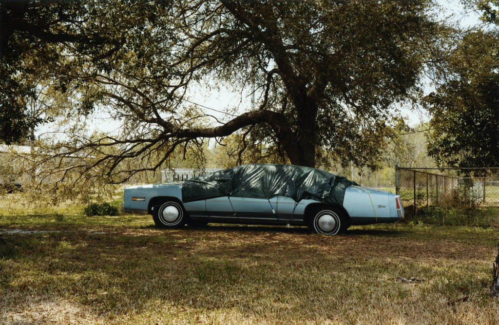 The Blue Car Under The Tree, Louisaina, 2010.